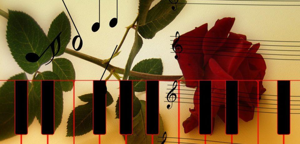 Сольный концерт Альбины Папок